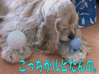 2006_05_21_056