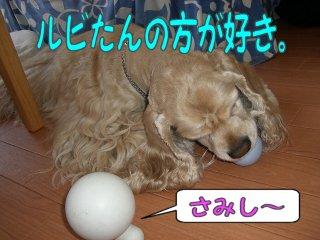 2006_05_21_064