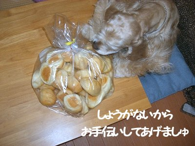 2006_12_18_005