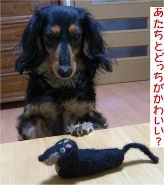 2006_04_29_0571_1